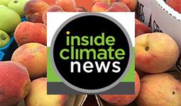 ICN_Logo