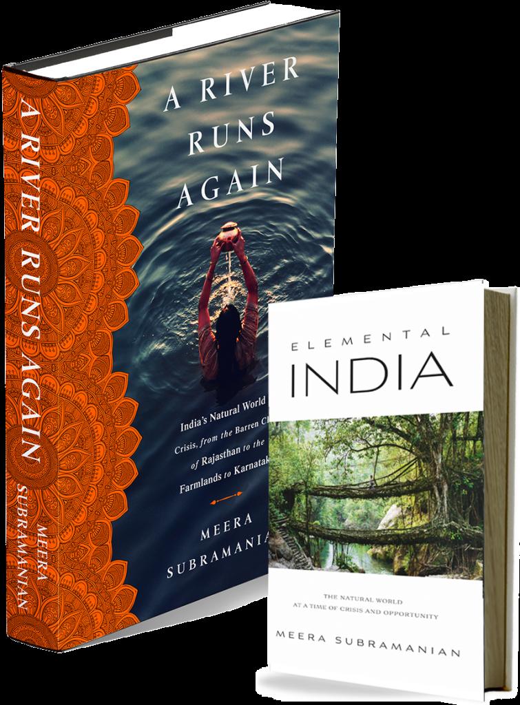 A River Runs Again Elemental India